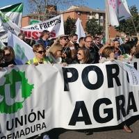 El Gobierno prohíbe la venta a pérdidas modificando la Ley de la Cadena Alimentaria