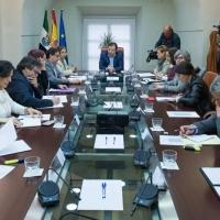 """La situación del coronavirus en Extremadura es """"estable"""""""