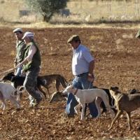 Sorteados 496 permisos de caza en terrenos públicos para 2020