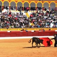 La Unión de Toreros quiere que la feria de Olivenza sea Fiesta Nacional