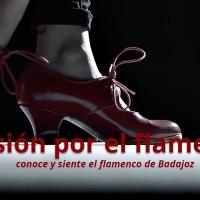 La Diputación de Badajoz lanza una web para aunar a sectores del flamenco