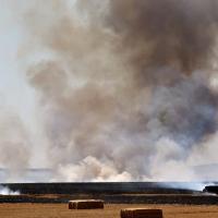 Incendio forestal entre Almendral y La Albuera