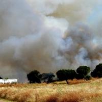 Los Bomberos se emplean a fondo en un incendio en la Margen Derecha (Badajoz)