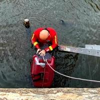 Los Bomberos de Badajoz sofocan varios incendios y rescatan a un animal del río Guadiana