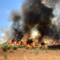 Un total de 19 incendios forestales arrasaron 170 hectáreas la pasada semana en Extremadura