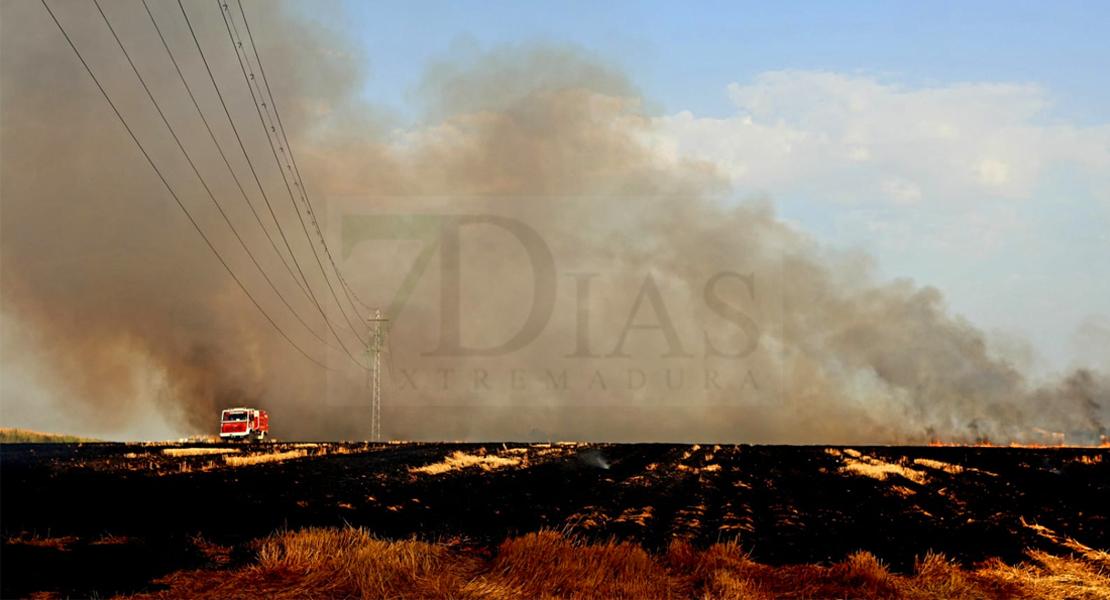 Los Bomberos actúan en un incendio forestal cercano a Badajoz