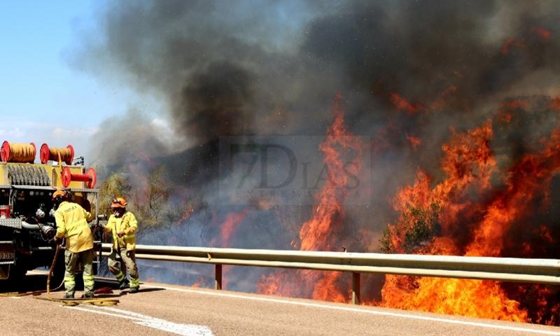 Bomberos Forestales intentan controlar un incendio en la Sierra Amador (Oliva de Mérida)