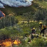 Destacan el gran trabajo realizado por el dispositivo del Infoex en los incendios en el Norte de Cáceres