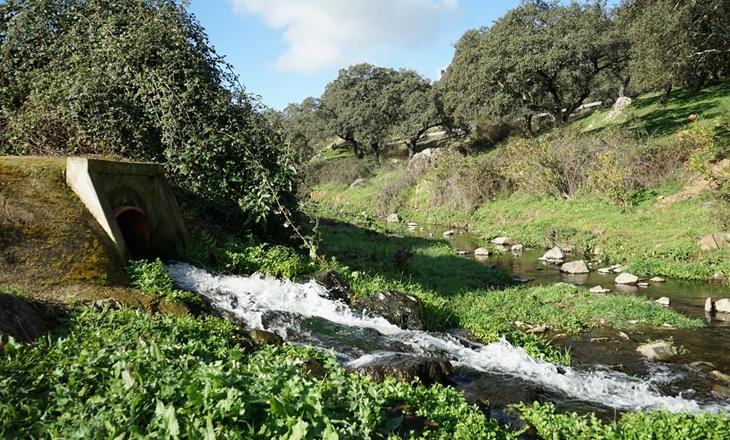 Promedio ejecutará 20 depuradoras de aguas residuales hasta 2023