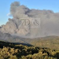 2 millones de euros para restauración forestal en el Valle del Jerte - La Vera