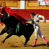 La Escuela Taurina de Badajoz homenajea a Ferrera