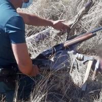 EXTREMADURA - La Guardia Civil investiga a un furtivo por abatir y despiezar un ciervo