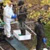 Descienden los contagios de manera sobresaliente en Extremadura