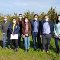 Autoridades de Brasil visitan Extremadura para retomar las exportaciones de ciruela