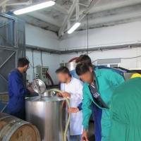 Más de 1.000 jóvenes se han incorporado a la actividad agraria en Extremadura