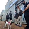 El perro viajero más famoso de España aterriza en Badajoz