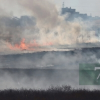 Incendio forestal frente a Los Montitos (Badajoz)
