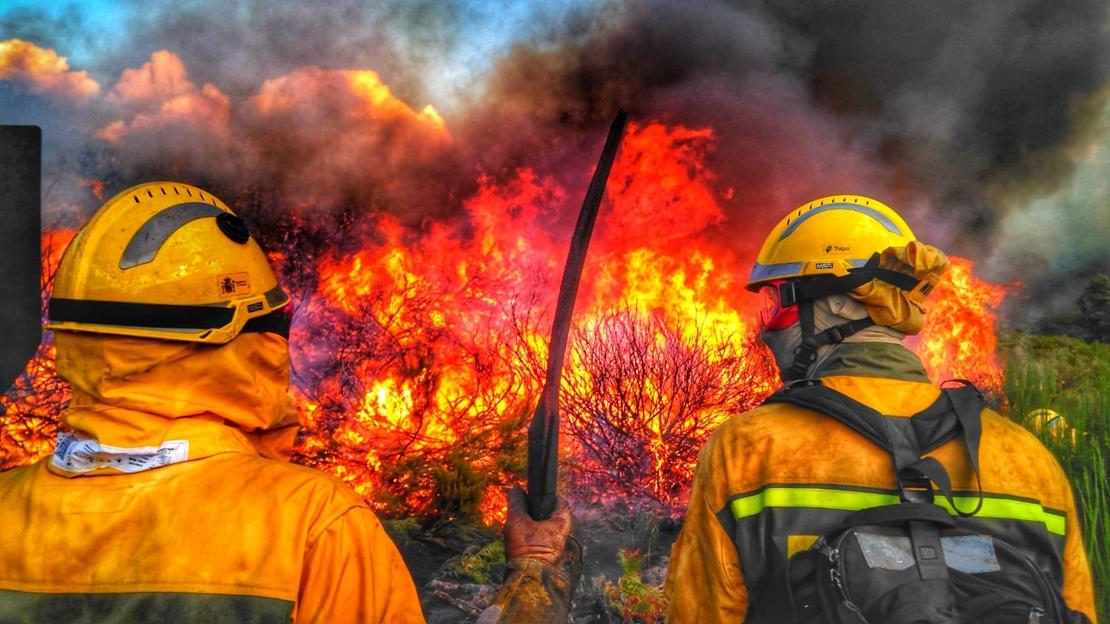 El verano será más caluroso de lo normal: preocupa el riesgo de incendios